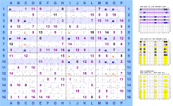 ../../images/Sudoku16x16_LogicSolver/BasicFishes/_Miniature/BasicFishes_Squirmbag_BaseSet_Righe1-3-6-8-10_CoverSet_ColonneA-C-I-N-O_eli8_small.png